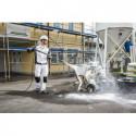 CarpetPro RM 760 Classic Środek czyszczący – proszek, 10 kg